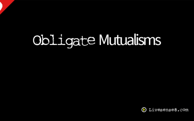 LS8 29: Obligate Mutualisms