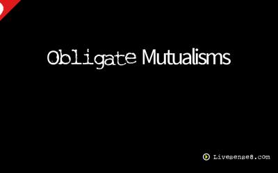 LS8 29: Obligate Mutualisms